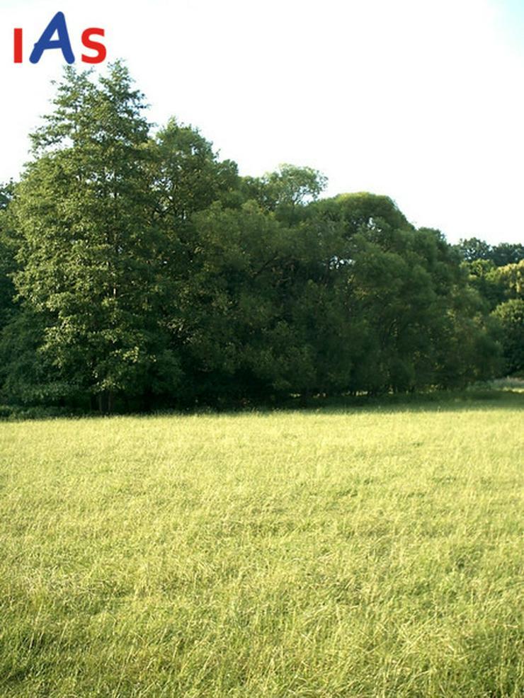 Bild 2: Zentral und absolut ruhig gelegenes Neubau-EFH auf großzügigem Grundstück!