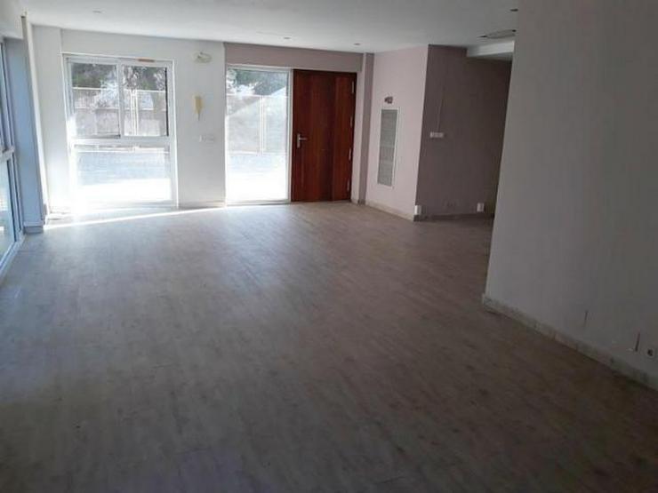 MIETE: Büroräume in Palma - Auslandsimmobilien - Bild 1