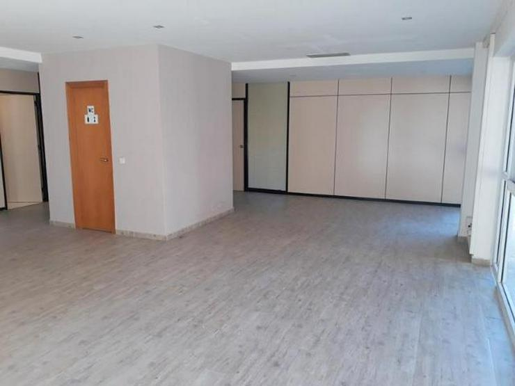 Bild 3: MIETE: Büroräume in Palma