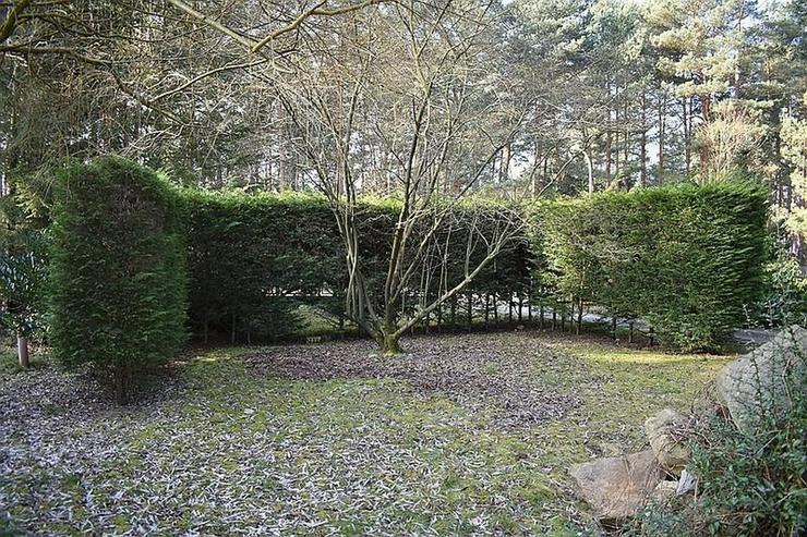 Bild 2: Bungalow mit großem Garten - Waldblick gratis - Ausstattung traumhaft - Sauna - Pool - Wi...