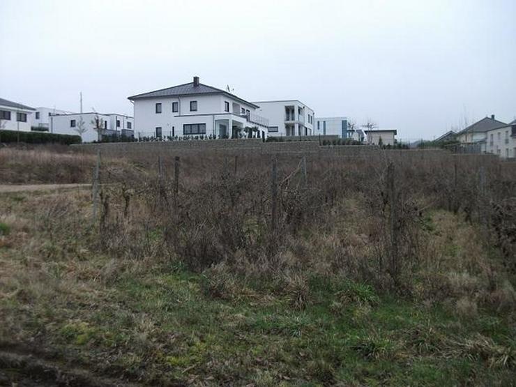 Bild 2: Top Lage-Top Aussicht-Top Grundstück - von Schlapp Immobilien