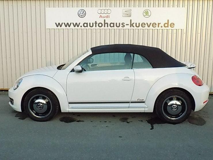 Bild 5: VW Beetle Cabrio 1,2 TSI DSG Cup Sitzheizung PDC