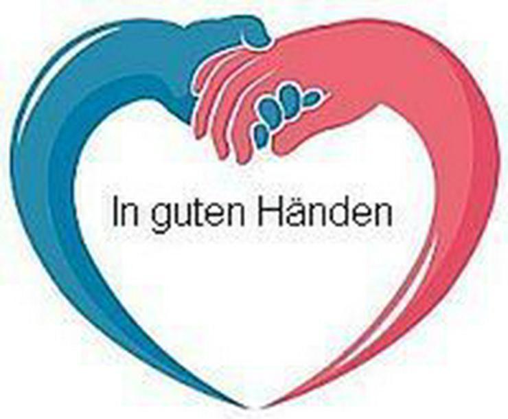 Sangerhausen - Haushaltshilfe, Seniorenhilfe