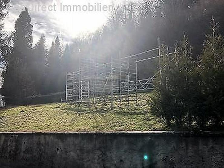 Bild 4: Schönes Grundstück in der Nähe des Rheins