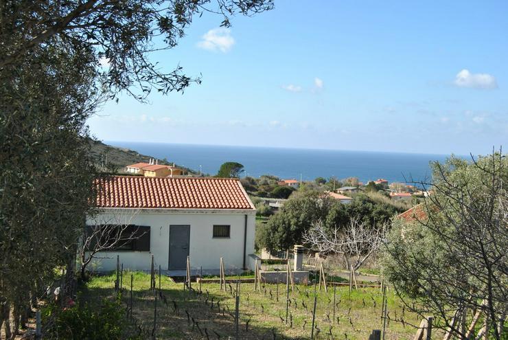Landhaus mit Weinberg, Bosa, Sardinien, Italien - Haus kaufen - Bild 1