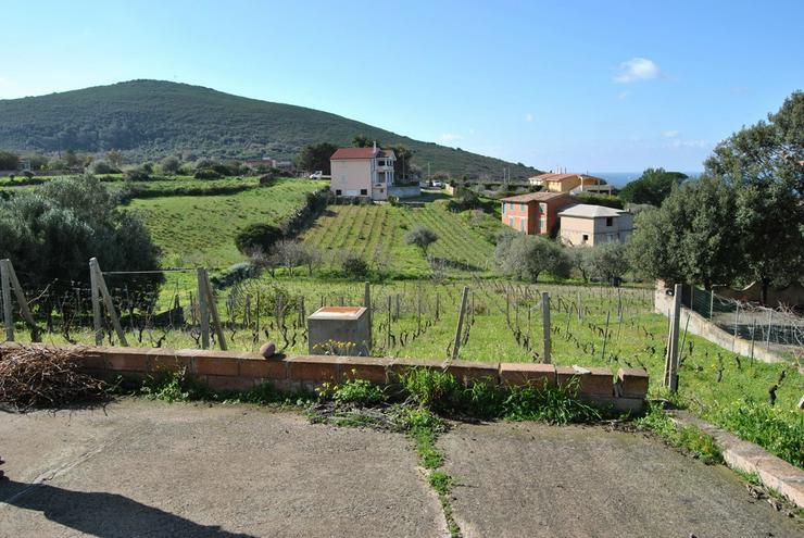 Bild 5: Landhaus mit Weinberg, Bosa, Sardinien, Italien