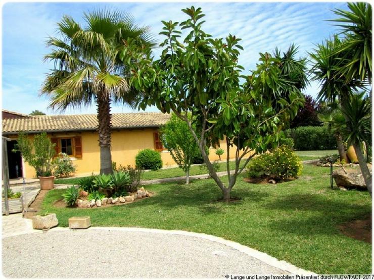 Bild 3: Mallorca - Muro - Finca mit Gästeapartments - Vermietungsmöglichkeit - Pool - Spanien Im...