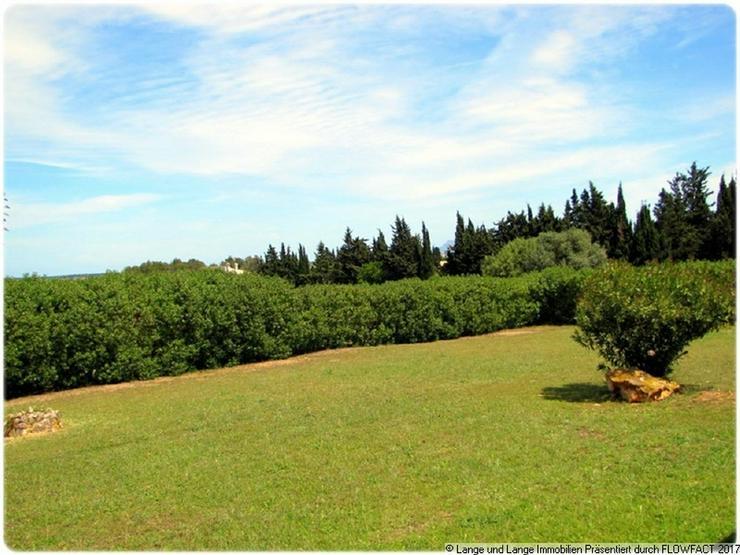 Bild 5: Mallorca - Muro - Finca mit Gästeapartments - Vermietungsmöglichkeit - Pool - Spanien Im...