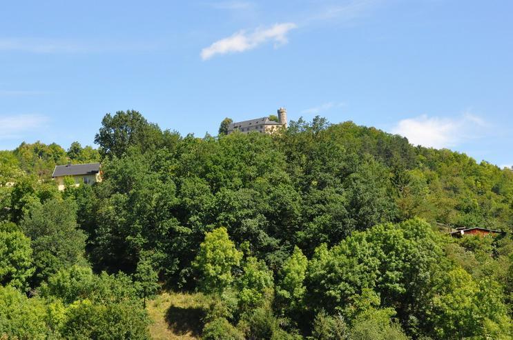 B24plus Eigentumswohnung mit Garten zum Top Preis - Wohnung kaufen - Bild 1