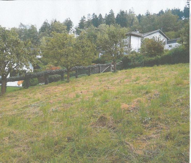 Bild 2: Grundstück in Bad Fredeburg