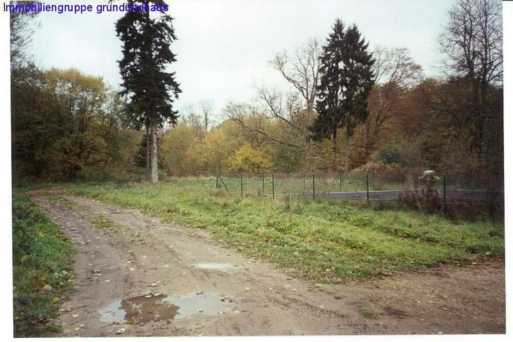 Bild 2: Idyllisches Baugrundstück plus Freizeit-Erholungsfläche in absoluter Ruhiglage