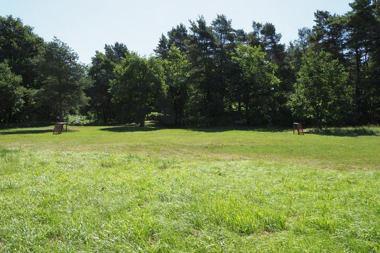 Bild 6: Lust auf großen Naturcamping in Hambühren? - der idyllische Dauercampingplatz im Grünen