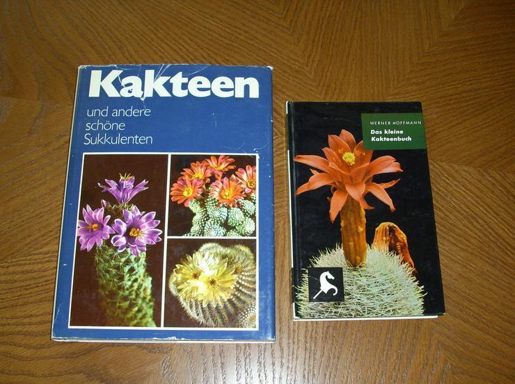 Kakteen - Buch