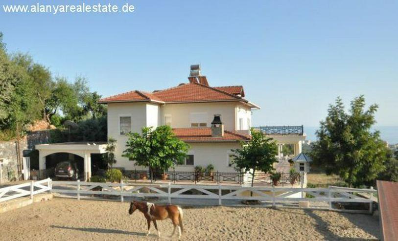 Bild 4: SCHNÄPPCHEN ! Großes Anwesen in Alanya Kestel mit privat Pool und extra Bungalow