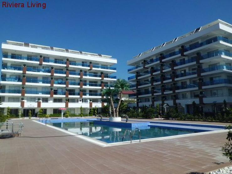 Komfortable Wohnungen und Penthaeuser in Alanya Kestel - Auslandsimmobilien - Bild 1