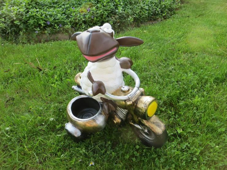 Schaf Dolly auf Motorrad oder am Zaun - Figuren - Bild 1