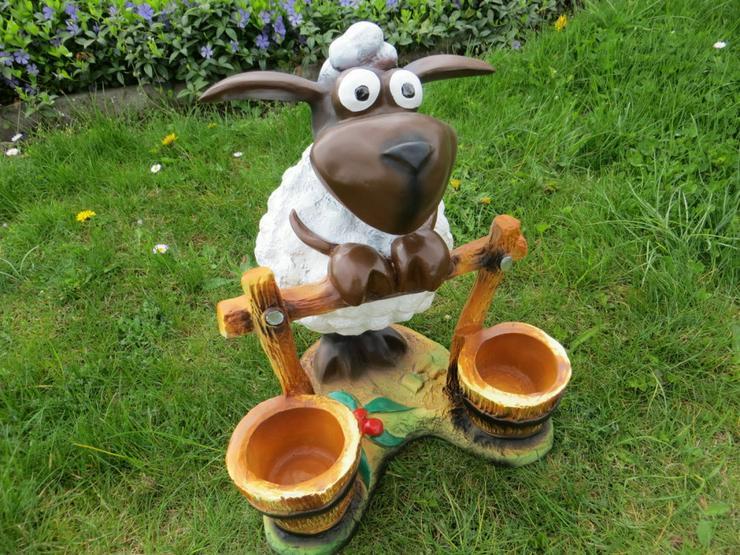 Bild 2: Schaf Dolly auf Motorrad oder am Zaun