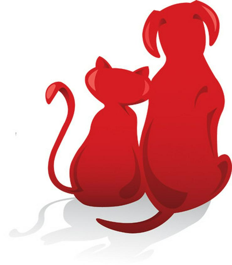 Nebenjob für Tierfreunde