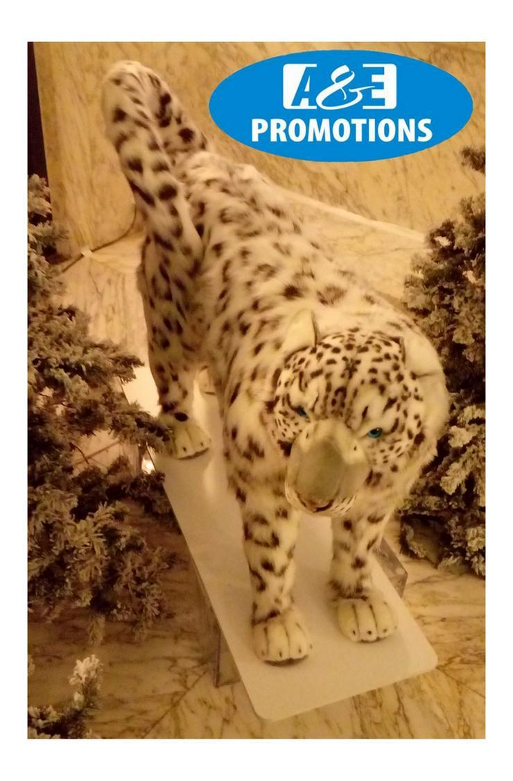 Bild 2: schneegeopard verleih schneepanter bremen