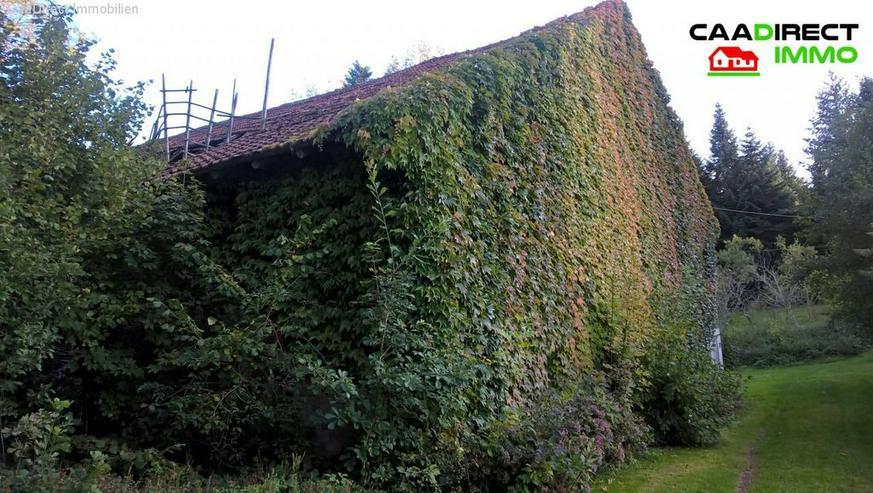 Bild 6: Authentisches Anwesen in grüner Oase in den Vogesen - 90 Min. von Basel u. Weil am Rhein