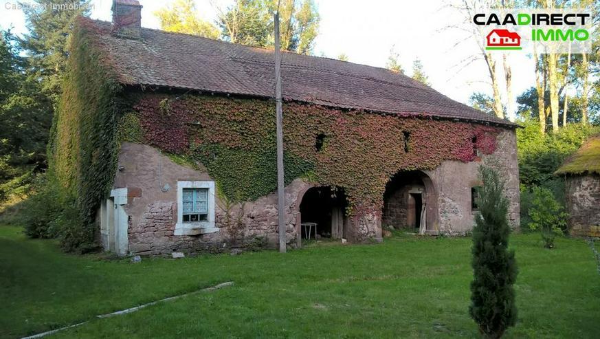 Bild 2: Authentisches Anwesen in grüner Oase in den Vogesen - 90 Min. von Basel u. Weil am Rhein