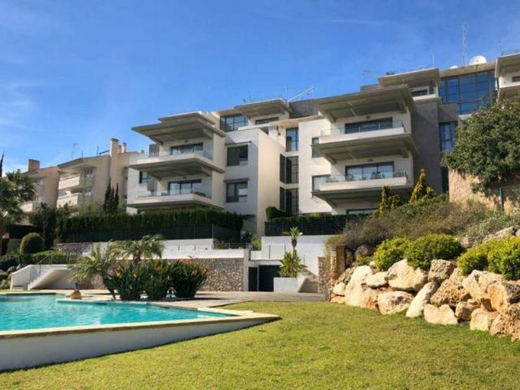 Bild 2: KAUF: Penthouse-Apartment mit Meer- und Hafenblick