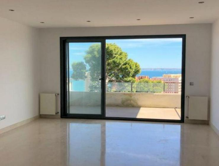 Bild 3: KAUF: Penthouse-Apartment mit Meer- und Hafenblick