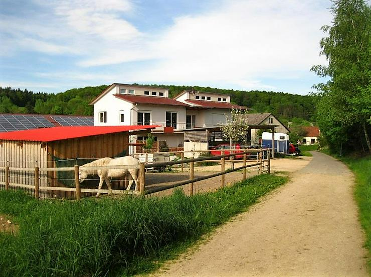 Wohnung über 2 Etagen mit Freisitz - Perfekt für Pferdeliebhaber - Bild 1