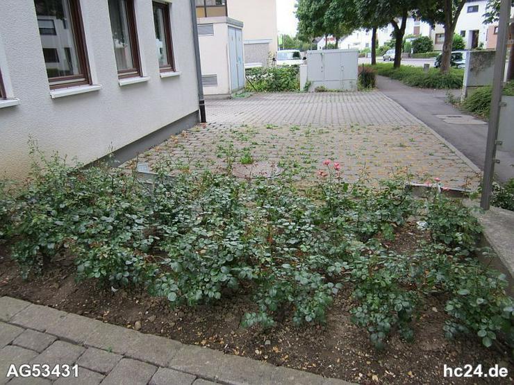 Bild 4: *** 3 Zimmerwohnung teilmöbliert Ulm-Lehr, auch geeignet als Studenten WG