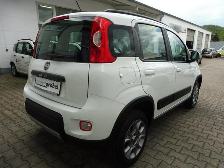 Bild 4: FIAT New Panda 4x4 Rock 0.9 TwinAir Turbo Klima mob.Navi