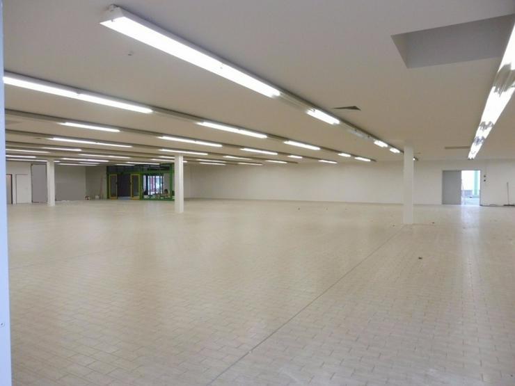 Bild 2: Große Halle für Lager, Logistik, Verkauf in Hof/Saale zu vermieten