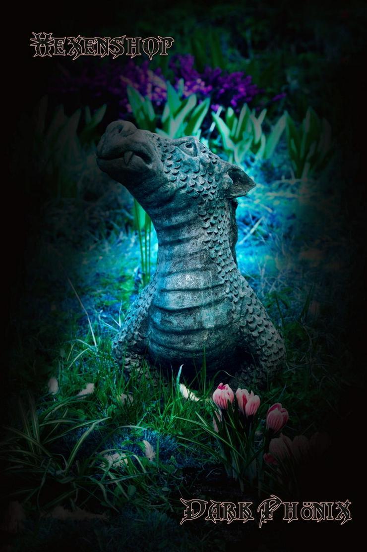 Bild 2: Hexenshop Dark Phönix Kartenlegen