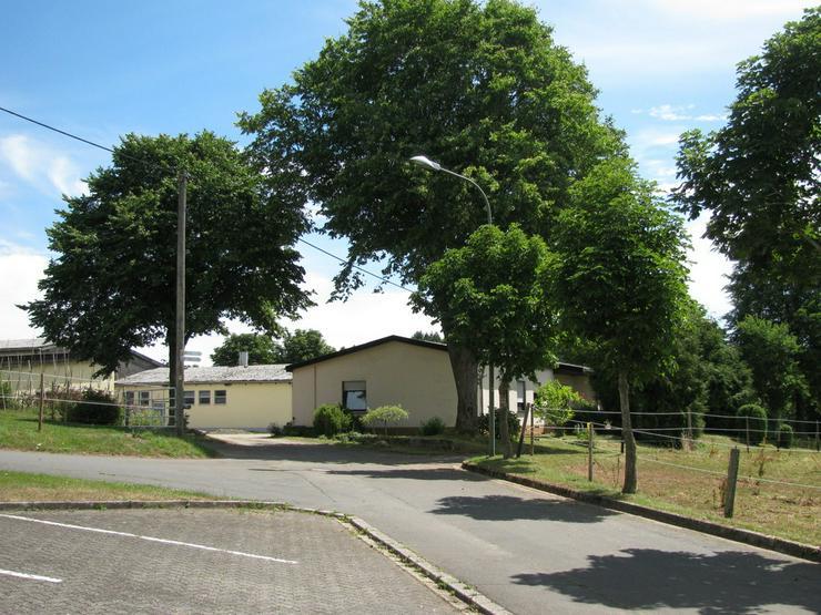 Bauernhof inmitten der Vulkaneifel - Bauernhäuser - Güter & Höfe - Bild 1