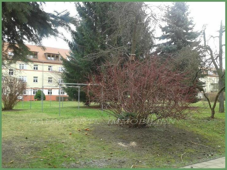 Bild 5: 2 Zimmerwohnung in Dresden-Tolkewitz in ruhiger Lage im Erdgeschoss kann ich Ihnen anbiete...