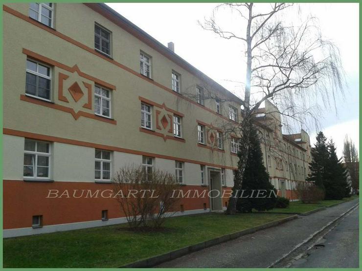 Bild 4: 2 Zimmerwohnung in Dresden-Tolkewitz in ruhiger Lage im Erdgeschoss kann ich Ihnen anbiete...