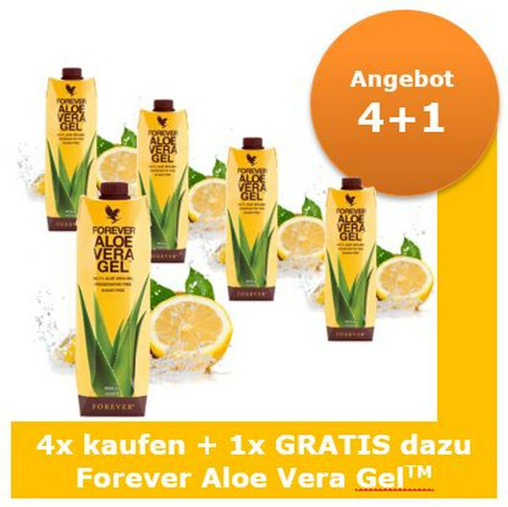 Forever Aloe Vera Gel™ ab 26,99 Staffelpreis   15% Rabatt auf alles   Versand: portofrei