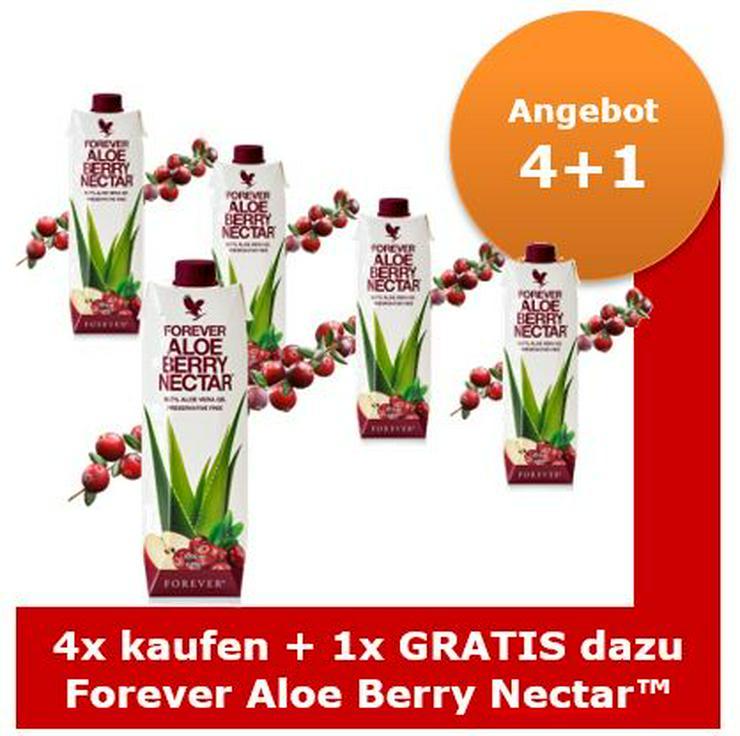 Forever Aloe Berry Nectar™  ab 26,99 € Staffelpreis   15% Rabatt auf alles   Versand: portofrei