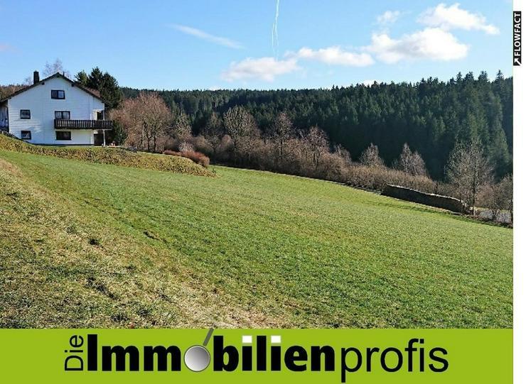 Sonniges Baugrundstück in Naila - Grundstück kaufen - Bild 1