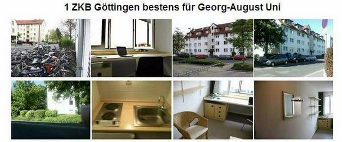 Single  Wohnung  37075  Göttingen City