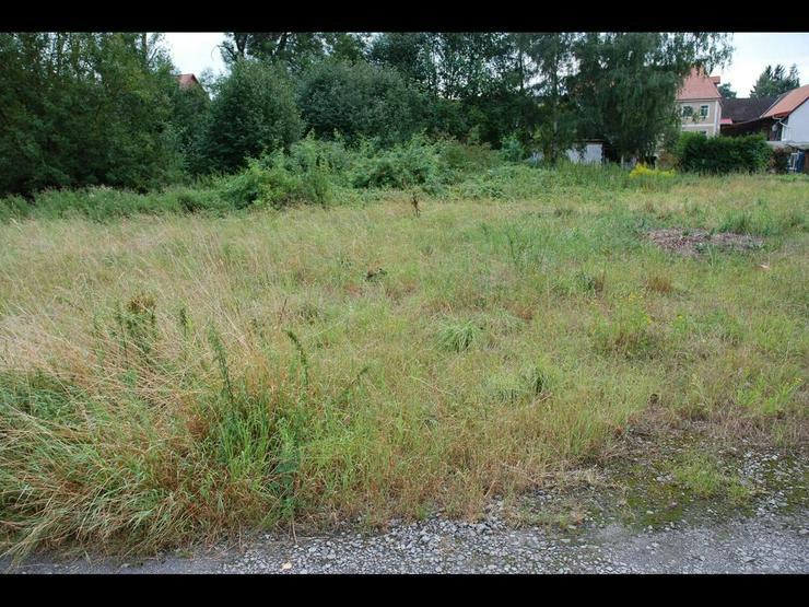 Bild 2: Baugrundstück in Bornum ? günstig gelegen im Dreieck Wolfenbüttel ? Börßum ? Sc...