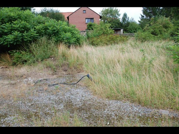 Bild 3: Baugrundstück in Bornum ? günstig gelegen im Dreieck Wolfenbüttel ? Börßum ? Sc...