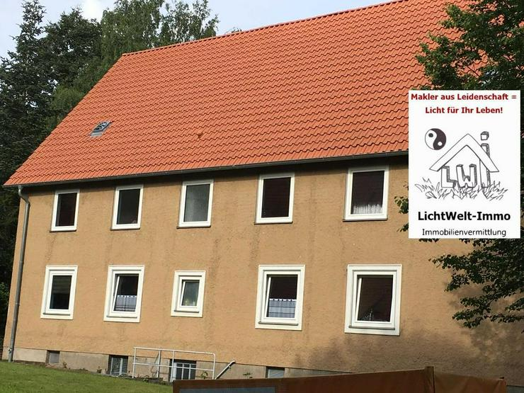 Eigentumswohnung in Salzgitter-Bad: 1 Zimmer, Erdgeschoss, zentrumsnah - Wohnung kaufen - Bild 1