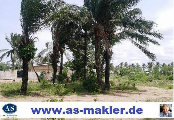Benin., ca. 1000 qm Baugrundstück in Hio Houta günstig zu verkaufen! - Auslandsimmobilien - Bild 1