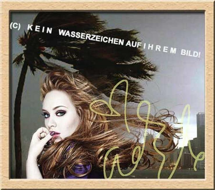 ADELE liebt Wind und Wetter! - Poster, Drucke & Fotos - Bild 1