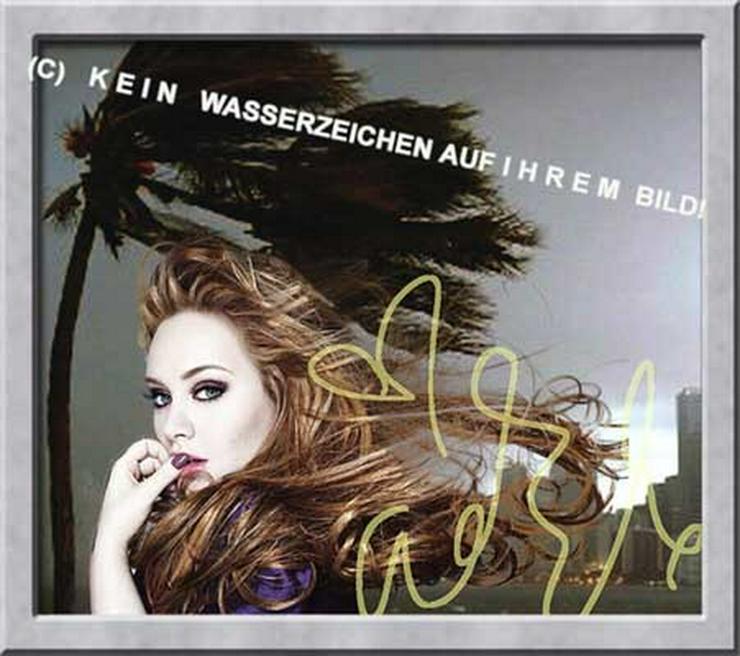 Bild 3:  ADELE liebt Wind und Wetter!