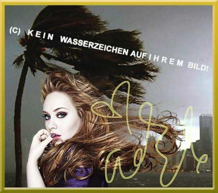 Bild 5:  ADELE liebt Wind und Wetter!