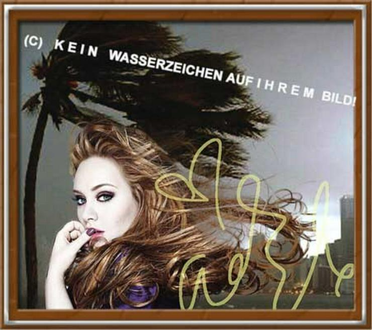Bild 4:  ADELE liebt Wind und Wetter!