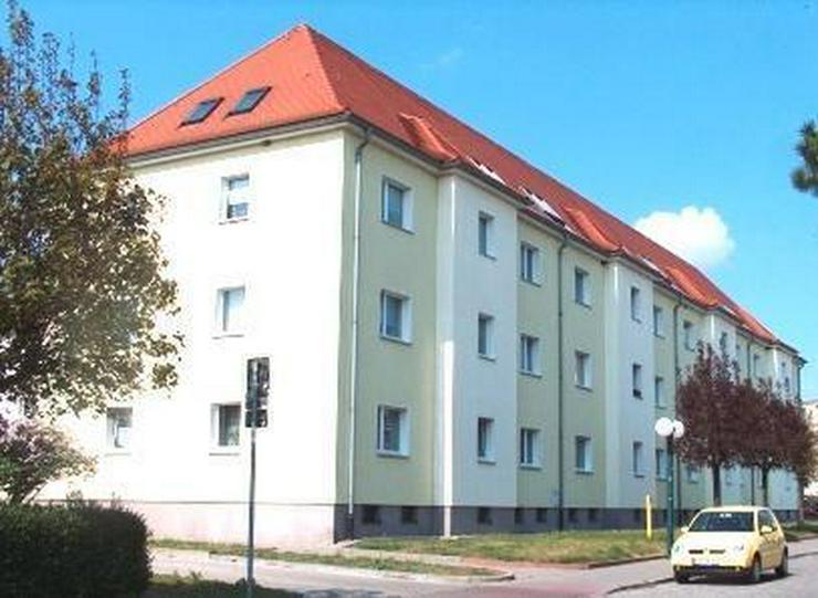 Zentral gelegene 2-Raum-Wohnung! - Bild 1