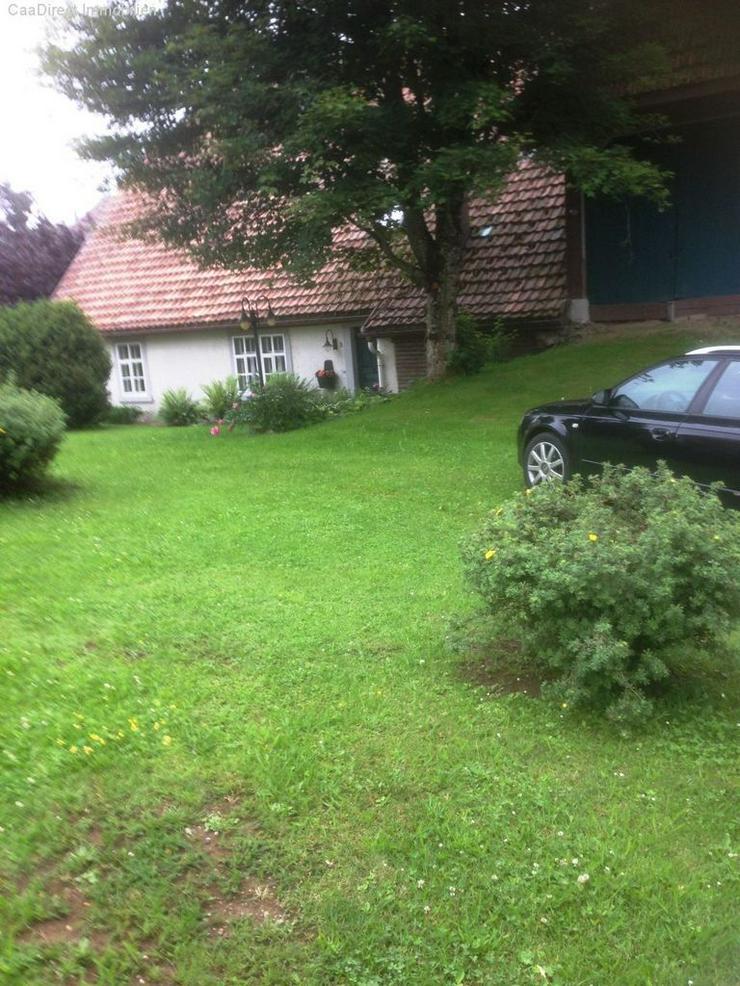 Bild 4: Fantastisches Bauernhaus mit viel Platz im und ums Haus