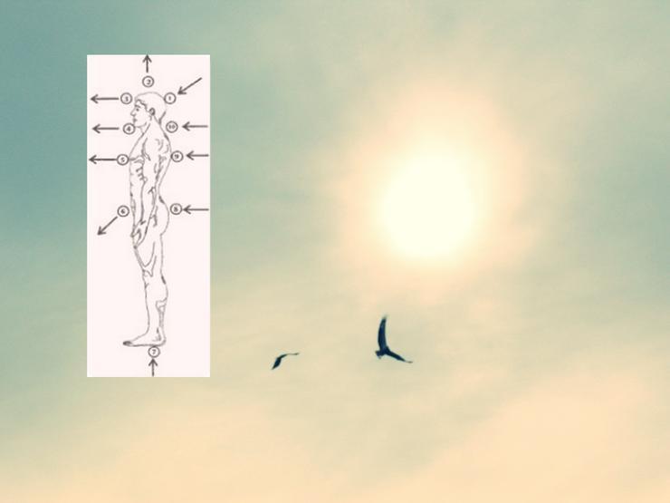 Tagesworkshop - Das Energiebild der Kabbala